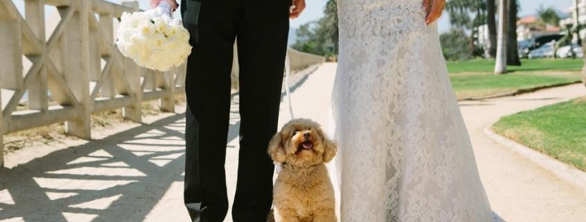 wedding planner malibu